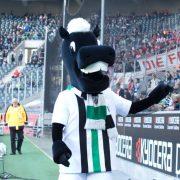 Borussia verpflichtet Michael Lang vom FC Basel