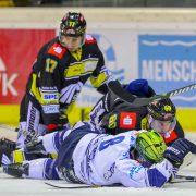 """Iserlohn Roosters stehen vor einem nervenaufreibenden """"Sechs-Punkte-Spiel"""" gegen die Krefeld Pinguine"""