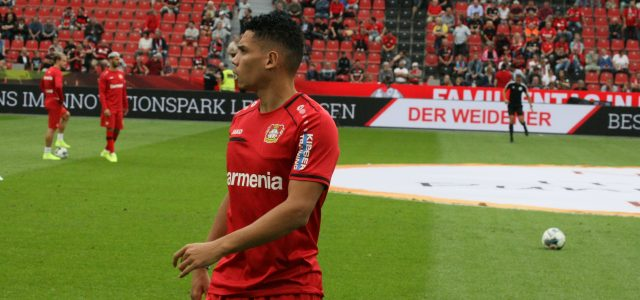 Kreuzbandriss – Leverkusens Paulinho fällt monatelang aus