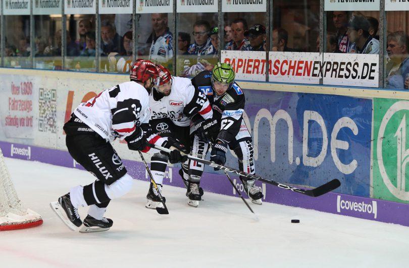 DEL: Iserlohn Rooster vs. Kölner Haie Copyright: Jan Brueggemann, Sportstimme.de